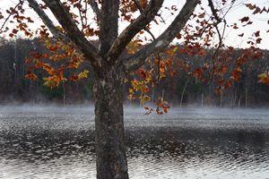 Missouri fall leaves over lake.