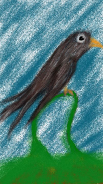 Little Black Bird - SCROGART