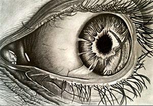 Human Eye -Close Shot