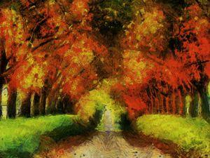 Colorful autum road