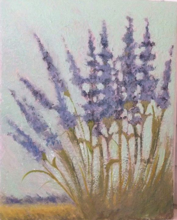 Lavender field - Mindy Reese
