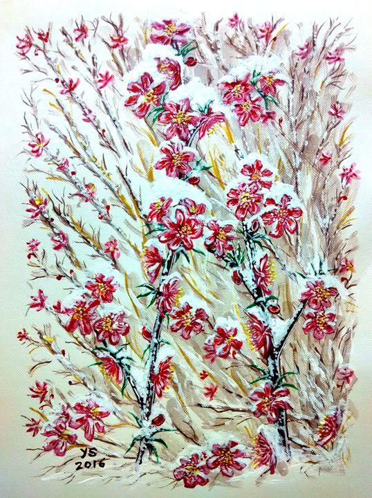 SNOW ON SAKURA - YS Gallery