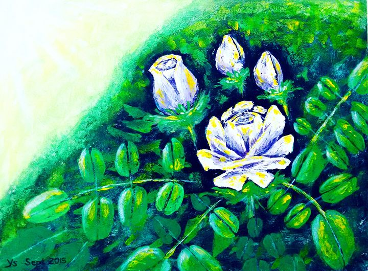 ROSES IN THE WILD - YS Gallery