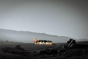McDonald's Wasteland