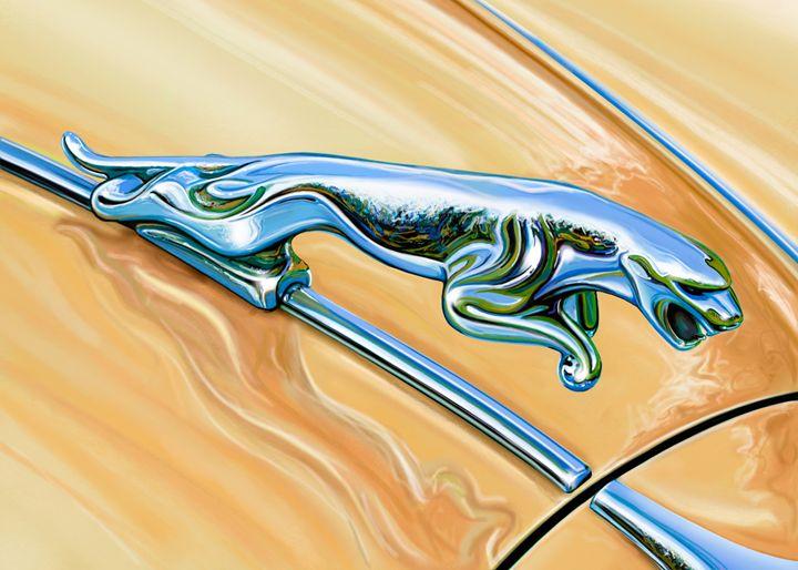 Jaguar Hood Cat - David F Kyte