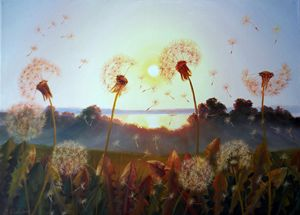 Sunset and Dandelions