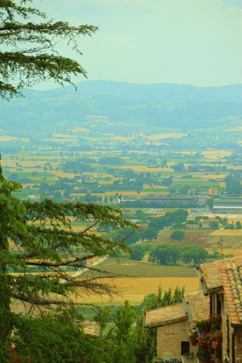 Views of Tuscan Countryside - Hankins Gallery