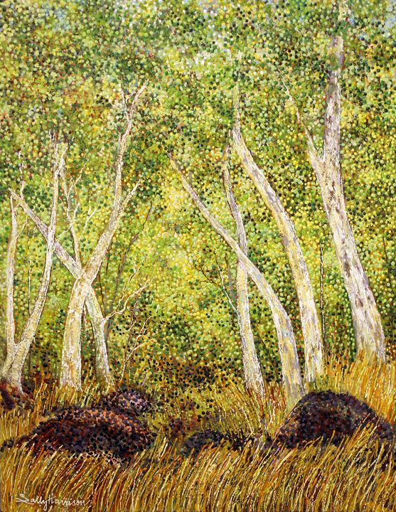 COOLABAH TREES: A STAIRWAY TO HEAVEN - Sally Harrison's Dot Paintings