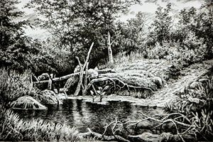The Forest pond