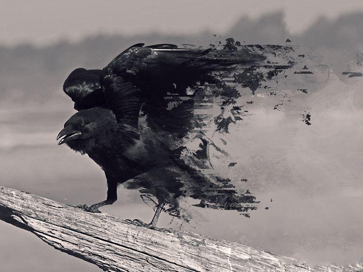 bird-414104 - Asthenia