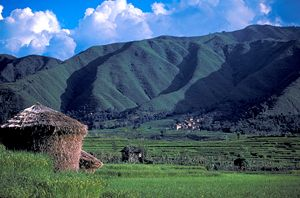 Green Hills of Nepal - Carl Purcell - Global Photography