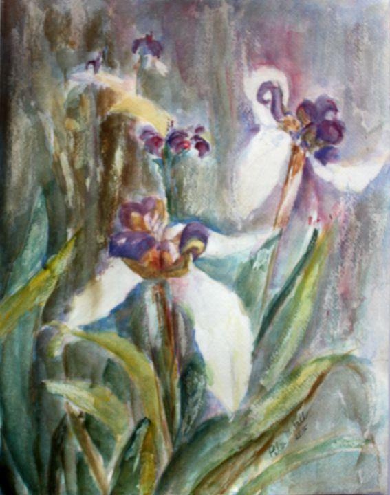 Canyon Woods Irises - Pilar Fall