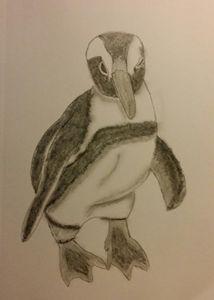 Posing Penguin - Lee 'Bert' Hammond