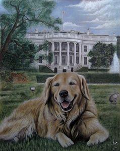 Kelli On The White House Lawn