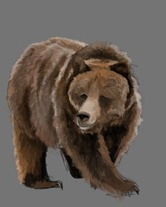"""Bear Pose"""