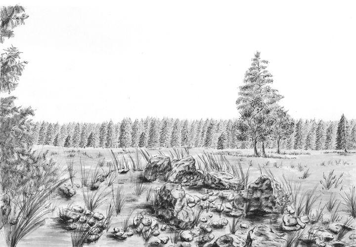 Stones - LucieHAVRANKOVA
