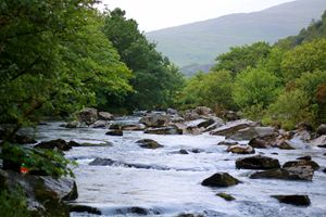 A river in Snowden, Wales