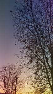 Perfect Sundown
