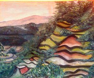 Ankileng Sagada rice terraces
