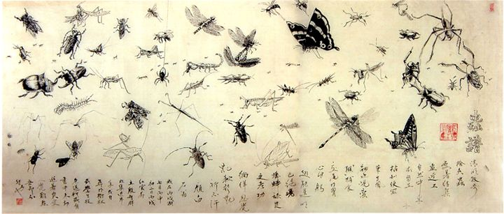Encylopedia Of Insects - Billowing Inkstone Gallery