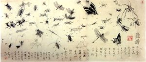 Encylopedia Of Insects