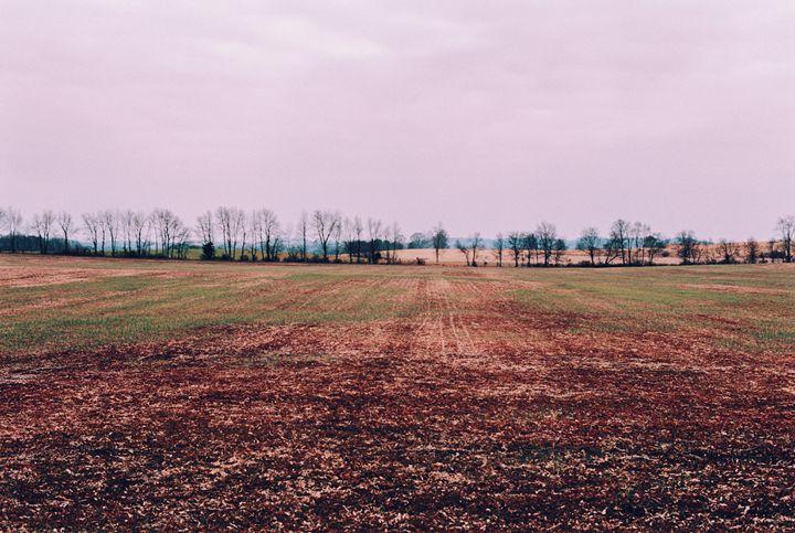 Autumnal Horizon - Jay Kim Photography