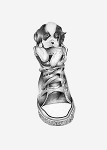 Dog in a shoe