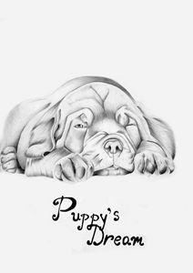 Puppy's dream