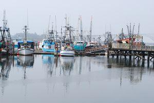 Yaquina Bay Harbor, Newport, Oregon