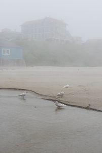 Fog at Nye Beach