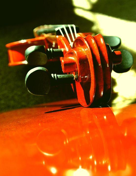 Violin - Havalah's Photography