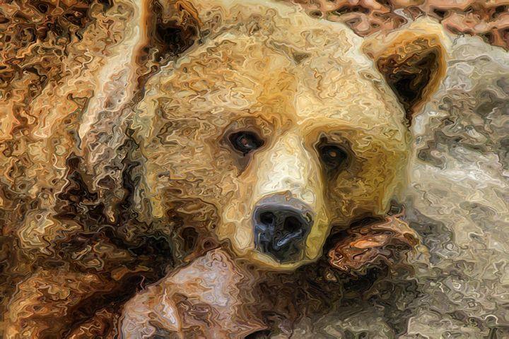 Lazy Grizzly Bear - PrintArt.US
