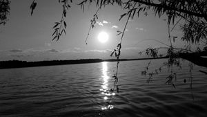 Peckerwood Lake moon light setting