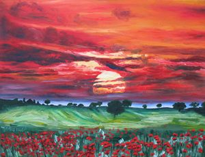 The Sun And The Poppies