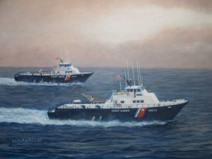 Cutters Seahawk and Shearwater