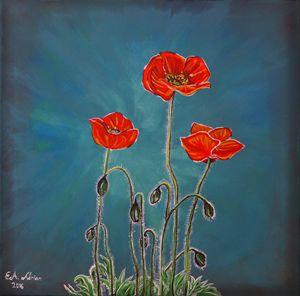 Poppy Love