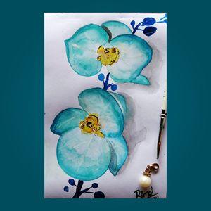 Aqua orchids