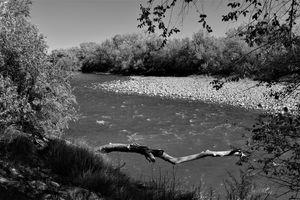 Animas River B&W