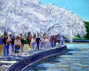 Cherry Blossom Parade - David Zimmerman Fine Art