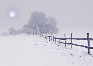 Northeast Winter Wonderland