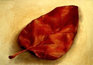 quince leaf, oil, B4