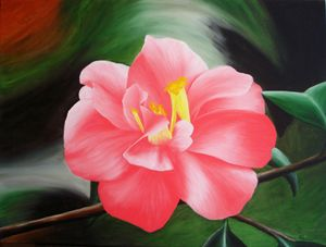 camellia, oil, A1 - rogerioarte