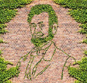 Brick Wall.  Overgrown Brick Wall an