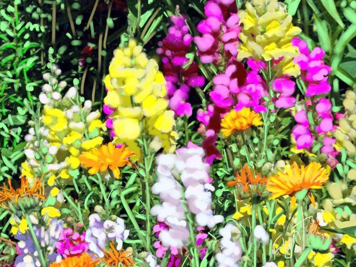 Deborah's Garden - Sheila Flynt