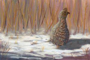 Winter Grouse - John W Fuller