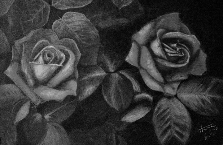 Gray Roses DIGITAL - annabrazao