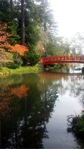 Goshi Park