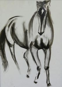 The beautiful horse
