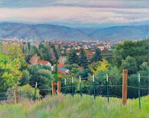 Cupertino, California Valley View