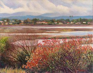 Don Edwards Preserve, Alviso, CA